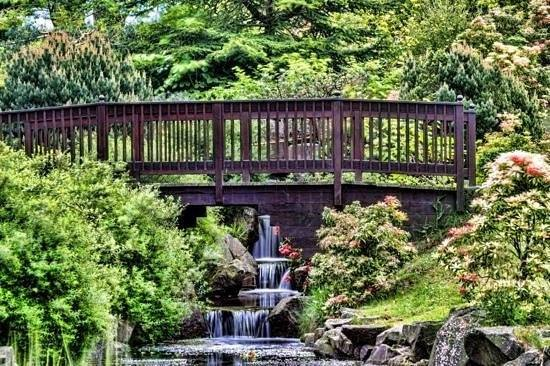 Kyoto Friendship Gardens, Edinburgh